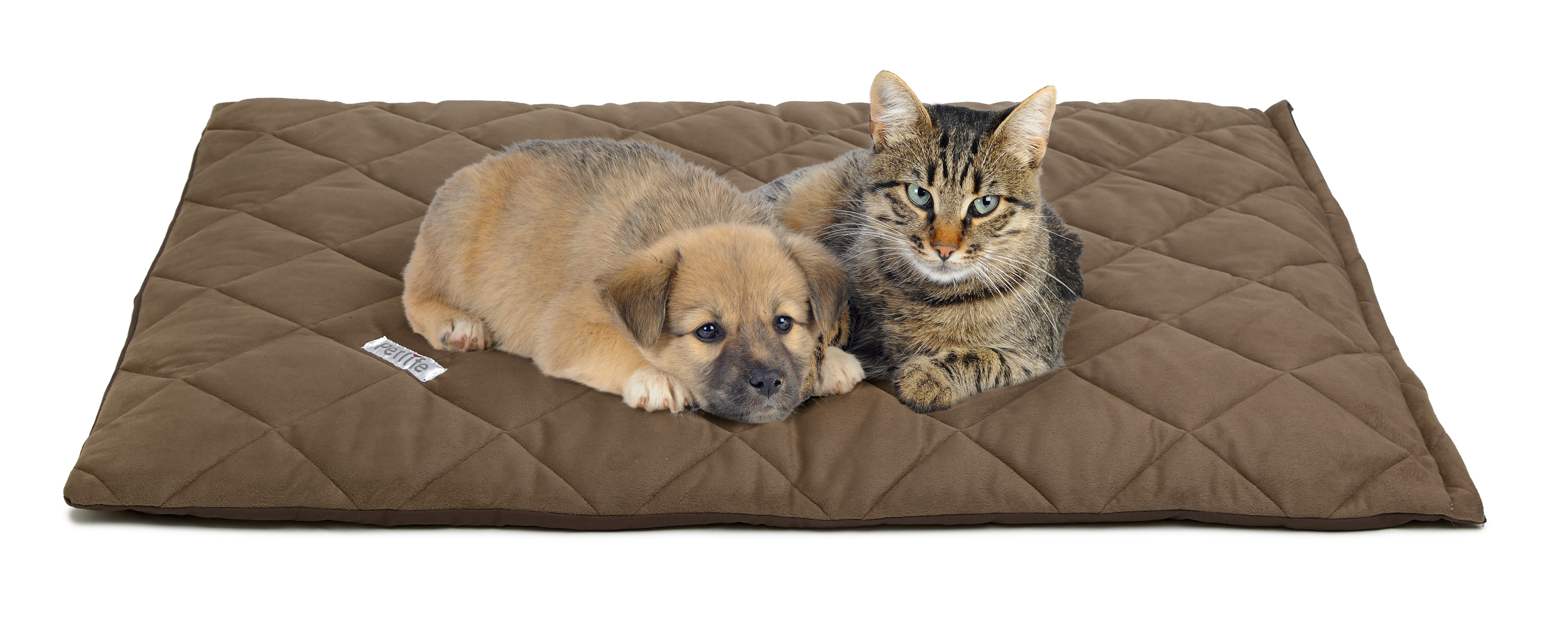 5 Smart Reasons for Purchasing Pet Supplies From an Online Store