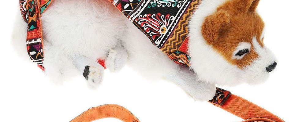 Understanding the Significance of Getting the Best Pet Supplies